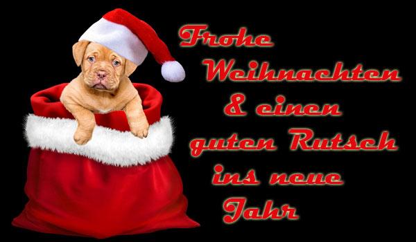 Wir Wünschen Euch Frohe Weihnachten Und Einen Guten Rutsch.Frohe Weihnachten